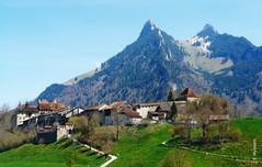 Castle Gruyeres (welenna) Tags: blue sky mountain mountains alps green castle architecture switzerland spring blumen berge stadt gruyeres alpen schloss sity gruyere schwitzerland