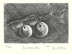 Tomato (Japanese Flower and Bird Art) Tags: flower art japan modern tomato print japanese solanum intaglio shigeru solanaceae oda lycopersicum readercollection