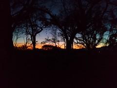 Beautiful night (Esteban 507) Tags: sunset naturaleza nature beautiful night landscape atardecer gloom misterio oscuridad oscuro penumbra
