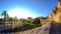 Posta de sol al Parc de la Mar (Palma) (CatiPerell) Tags: landscape catedral fisheye mallorca palma majorca baleares palmademallorca balearicislands balearic ojodepez balears illesbalears islasbaleares ulldepeix parcdelamar parquedelmar