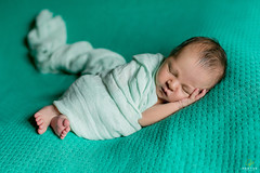 OF-Newborn-Bruno-43 (Objetivo Fotografia) Tags: boy sleeping baby cute love photography foto photos sleep amor wrap lindo fotos newborn beb fofo bruno menino poses props dormindo pequeno guri fotografias fofura recmnascido shusher newbornposes lajeadors objetivofotografia manuelakunzler somdotero