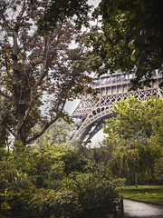 Autochrome (joannasaviour) Tags: autochrome eiffel tower tour trees park grass garden path nature city paris france metal frame iconic romance charm landscape film olympus lumix