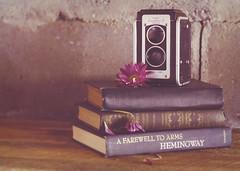 Sometimes... (Fire Fighter's Wife) Tags: camera wood stilllife plant flower vintage lens 50mm spring nikon soft poetry poem dof blossom kodak quote antique pastel cement may books depthoffield faded 1950s pastels poet daisy imagination cracks emotions dreamer depth matte oldcamera grungy dreamers hemmingway ernesthemingway duraflex softcolors feelingsandemotions fadedcolors kodet d80 kodetlens duraflexii afarewelltoarmsbyernesthemingway antiquestilllife shortstoriesofdemaupassant feelingsthroughmylens kodakduraflexiicamera swissfamilyrobinsonbyjeanrudolphwyss