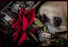 75 proof (ericbaygon) Tags: italien red roses black flower fleur rose rouge skull italian nikon italia noir mort alcool montage tte nikonpassion 75 d300s