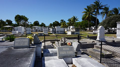 Key West Cemetery, FL (SomePhotosTakenByMe) Tags: city vacation friedhof usa holiday tree cemetery grave graveyard america keys island unitedstates florida outdoor urlaub tombstone palm insel stadt gravestone keywest grab amerika grabstein palme baum floridakeys keywestcemetery