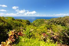 IMG_0052.jpg (Michele Stocco) Tags: hawaii gardenofeden 2016 mauiroadtohana