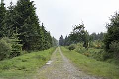 SAM_2585 (Der_Weber) Tags: wanderung hohes venn belgien langzeitbelichtung wasser schwarzweis grn