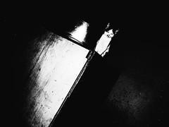 R0014693 (kenny_nhl) Tags: life street shadow blackandwhite bw black monochrome cat dark photography photo blackwhite shot flash 28mm streetphotography surreal scene snap explore malaysia visual ricoh provoke grd explored streephotography grd4 grdiv