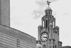 Royal Liver Building (Bev Goodwin) Tags: england liverpool northwest liverbird pierhead royalliverbuilding