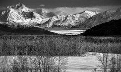Knik Glacier (grbenson3) Tags: palmer alaska unitedstates glacier knikglacier winter trees ice mountains chugachmountains blackwhite shiningexcellence shining blackwhitepassionaward
