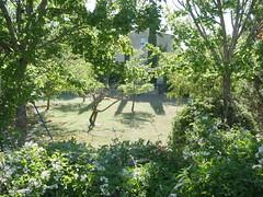 Shooting Naïade - Berges du Largue -2016-07-03- P1440392 (styeb) Tags: shooting shoot naiade riviere river largue saint martin les eaux 2016 juillet 03 berges cosplay