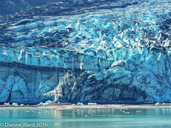 P7072233-Edit (Tewmom) Tags: alaska glacierbay glacier landscape mountain
