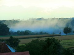 2016-07-13 Nebel (eagle1effi) Tags: nature natur tbingen sx60