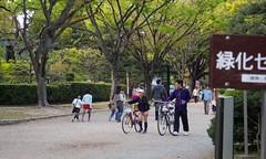 Bike Ride (Oz Wrigley-Pimley-McKerr) Tags: park man tree girl bicycle japan father daughter olympus nagoya   aichi    2014 epm2
