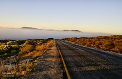 Into the mists (Dreamcatcher photos) Tags: road travel mist mountain tarmac sunrise outdoors fynbos elandsbaai dreamcatcherphotos