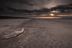 DSC_8809_E58_ALONE (antelope reflection) Tags: light sunset sky sun storm mountains beach water weather clouds landscape utah sand nopeople lakebed driftwood antelopeisland greatsaltlake shore causeway utahstatepark amazingamazing nikond750