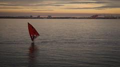 Windsurfer (Mariasme) Tags: sunset sea reflection water horizon windsurfing asplashofred