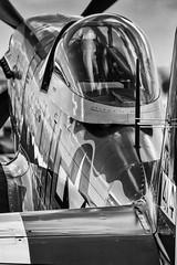 G-MSTG P51D Mustang 'Janie' (amisbk196) Tags: uk other aircraft aviation airshow mustang amis essex warbird 2010 janie p51d northweald gmstg gatheringorwarbirdsandveterans