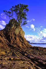 One Tree Rock... (fotonut NZ) Tags: blue sea newzealand sky texture water rock skyline clouds river landscape outdoor crack shore whakatane shorescape pofutukawa