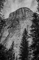 El Capitan (Jared Pavlicek) Tags: california blackandwhite nature silver outdoor climbing yosemite yosemitenationalpark elcapitan elcap