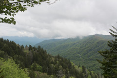 Great Smokey Mountains National Park - Swinging Bridge Overlook (S.Till Photography) Tags: park mountains great national smokey