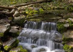 """Fern Spring"" (rbeebephoto) Tags: california waterfall pentax april yosemitenationalpark sierranevada 2012 yosemitevalley fernspring pentaxart pentaxk5 richarddbeebe richardbeebe2012"