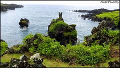 Hana WSP(1) (NatePhotos) Tags: road sunset sea hawaii bay waterfall rainbow cows turtle maui hana jungle waterfalls kapalua rooster eel napili 2016 natephotos