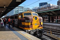 Transport Heritage NSW - 4490 - Platform 2, Sydney Central Railway Station (john cowper) Tags: sydney newsouthwales longweekend centralrailwaystation 4490 44class heritageexpress transportfornsw transportheritagensw