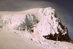 5. Hvannadalshnukur 2110m - The highest point in Iceland (30.05.2016) (alaijivi) Tags: trekking volcano iceland europe hiking peak summit highest alpinism hvannadalshnukur hvannadalshnjkur mountaneering rfajkull 20002500m 2110m