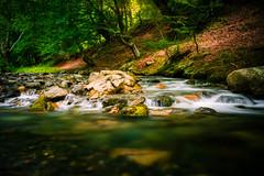 White River (sfabisuk) Tags: wood white river long exposure forrest bulgaria kalofer