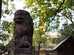 (nositomo) Tags: tokyo japan
