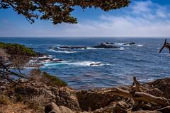 Big_Sur_E-2378 (erniezahn) Tags: bigsur ca carmel pacific pointlobos pointlobosstatepark statepark brush cliffs clouds hiking landscape nature ocean rocks sea sky trees water