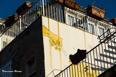 una mano sul muro (dwarfphotos) Tags: tramonto trapani marsala stagnone mura di tramontana nikon d5200 55300 flickrunitedaward