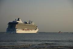Marina DST_3765 (larry_antwerp) Tags: marina 9438066 cruise antwerp antwerpen       port        belgium belgi          schip ship vessel        schelde        oceaniacruises kisa kisaagencies