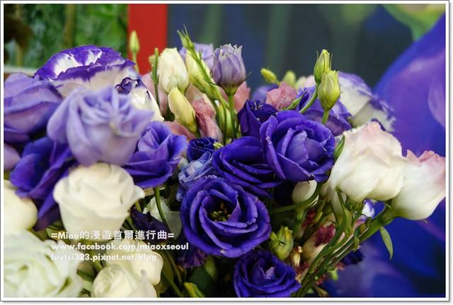 고양국제꽃박람회027