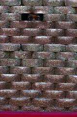 365x4.126: where i'm at (malik ml williams) Tags: selfportrait wall bricks naturallight 365days werehere openshadow selfimprisonment 365x4 hereios 115in2015