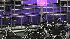 No bycicles (oskar010809) Tags: schilder bahnhof lila bycicles fahrrder