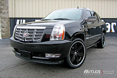 Cadillac Escalade with 24in Black Rhino Letaba Wheels (Butler Tires and Wheels) Tags: cars car wheels cadillac tires vehicles vehicle rims blackrhino cadillacescalade butlertire butlertiresandwheels blackrhinowheels blackrhinorims 24inwheels 24inrims cadillacescaladewith24inrims cadillacwith24inwheels cadillacwith24inrims cadillacescaladewith24inwheels cadillacwithrims cadillacwithwheels 24inblackrhinowheels 24inblackrhinorims cadillacescaladewithrims cadillacescaladewithwheels escaladewithwheels escaladewithrims escaladewith24inrims escaladewith24inwheels blackrhinoletaba 24inblackrhinoletabawheels 24inblackrhinoletabarims blackrhinoletabawheels blackrhinoletabarims cadillacescaladewith24inblackrhinoletabawheels cadillacescaladewith24inblackrhinoletabarims cadillacescaladewithblackrhinoletabawheels cadillacescaladewithblackrhinoletabarims cadillacwith24inblackrhinoletabawheels cadillacwith24inblackrhinoletabarims cadillacwithblackrhinoletabawheels cadillacwithblackrhinoletabarims escaladewith24inblackrhinoletabawheels escaladewith24inblackrhinoletabarims escaladewithblackrhinoletabawheels escaladewithblackrhinoletabarims
