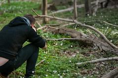 Motivjagd (Rose N. Kohl) Tags: wood nature germany deutschland nikon fotograf fotografieren photographer outdoor natur wald jger motiv hainich