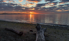 New Day (Paul Rioux) Tags: morning seascape beach clouds sunrise reflections dawn log outdoor britishcolumbia scenic victoria vancouverisland driftwood westcoast seashore daybreak colwood westshore alberthead prioux