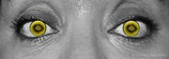 30-Alimentos-Veo kiwis por todos lados #ojos #eyes #kiwis #verde #green #fruta #fruit #2016 #pestaas #eyelashes #macro #mirada #look #blancoynegro #blackandwhite #photography #photographer #sonyalpha #sonyalpha350 #sonya350 #alpha350 (Manuela Aguadero) Tags: blackandwhite macro verde green blancoynegro look photography eyes photographer eyelashes kiwis ojos mirada pestaas 2016 sonyalpha sonyalpha350 sonya350 alpha350