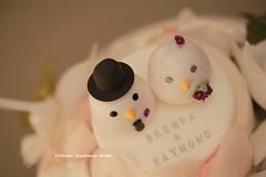 love birds Wedding Cake Topper (charles fukuyama) Tags: wedding cute bird clay bouquet lovebird oiseau weddingceremony sculpted initials pjaro  bridalbouquet weddingcaketopper customcaketopper handmadecaketopper animalscaketopper kikuike