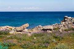 Pianosa 16308 (Roberto Miliani / Ginepro) Tags: trekking walking island hiking ile tuscany toscana elbe isola toskana camminare parconazionale arcipelagotoscano pianosa