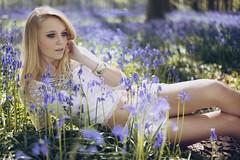 Into the wild (Anastasia Vervueren) Tags: flowers hallerbos gipsy beauty nature sun summer