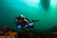 IMG_8969 (Josh.Cummings) Tags: ocean divers dive newengland diving ann cape drysuit rockport rebreather ccr cummings revo coldwater rockportma nitrox joshcummings joshuacummings nategarrett joshcummingsunderwater newenglanduwphotographywater capeanndivers jrcummings