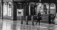 Rain bounces down. (steve.gombocz) Tags: street bw rain blackwhite noiretblanc blacknwhite greyscale bwphoto noirblanc whiteblack negroyblanco negroblanco schwartzweiss olympuscamera schwartzundweiss flickrstreet flickrblackandwhite olympusm25mmf18 olympusem5mark2