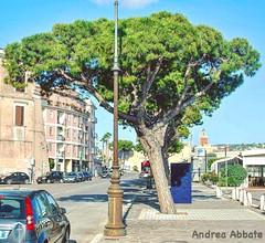 (Abbate Andrea) Tags: andreaabbate albero centrostorico medievale lungomare nikon35mm18g d3000 35mm nikkor nikon particular particolare italia latina lazio gaeta