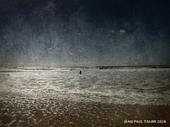 Perdue dans l ocan (JEAN PAUL TALIMI) Tags: mer texture beach vent solitude sable vague plage bleue seul silouettes landes touristes sudouest aquitaine personnages biscarrosse talimi