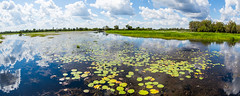 East Aligator River, Kakadu-40 (Moyseee) Tags: travel panorama landscape outdoors cr2 riverscene