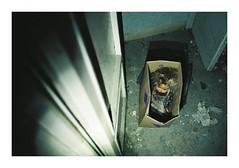 Fedele #7 (Lalangue.) Tags: analog nikonfm kodacolor desolata manicomioabbandonato bambola doll